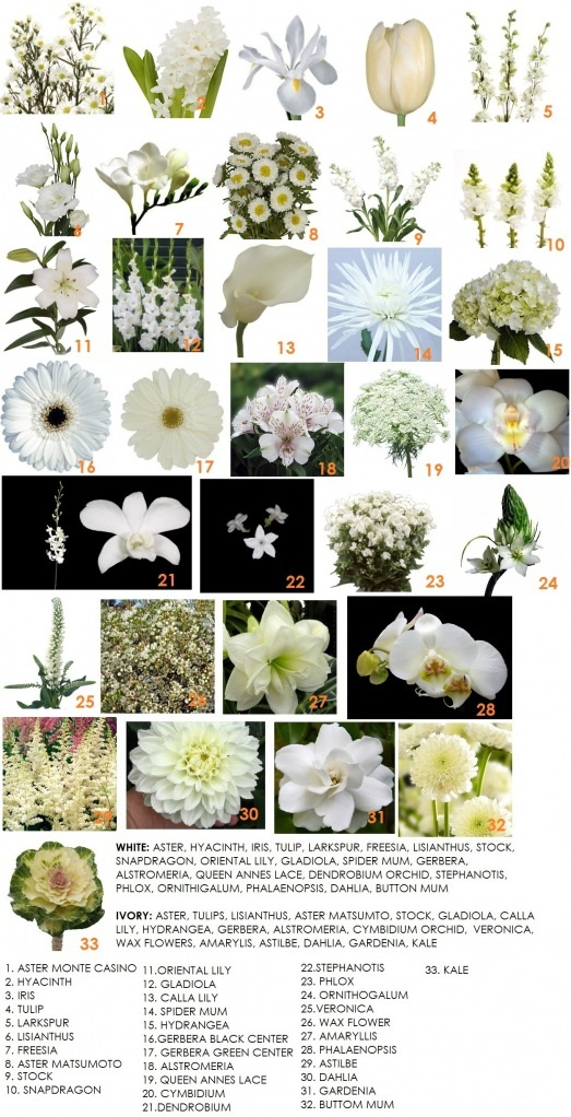 Inspiration board archives page 8 of 12 dahlia floral design color series white flowers for weddings mightylinksfo
