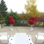 ROSE BALL RED DOUBLE CEREMONY DISPLAY 500
